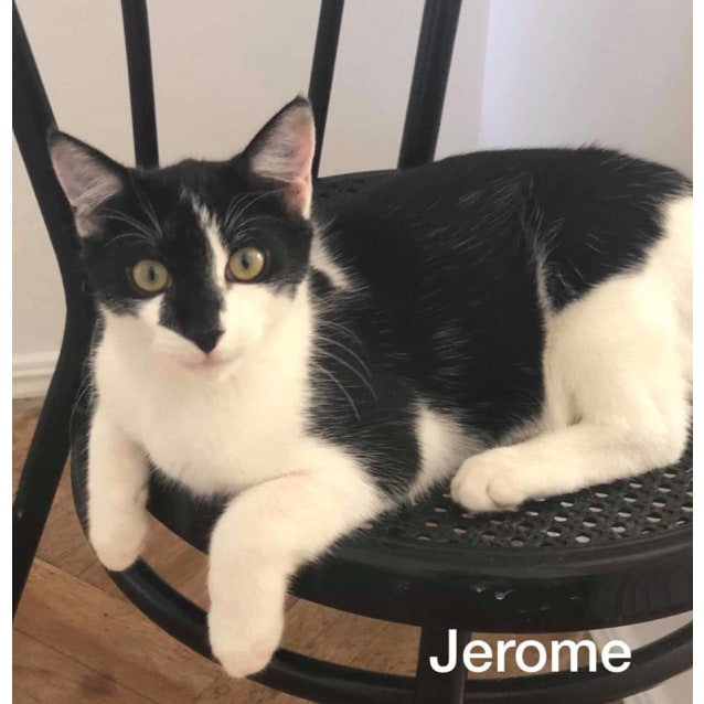 Photo of Jerome