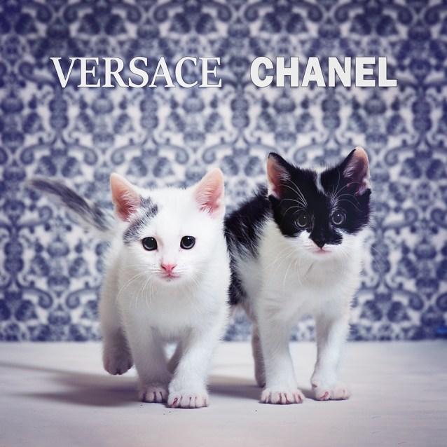 Photo of Versace & Chanel