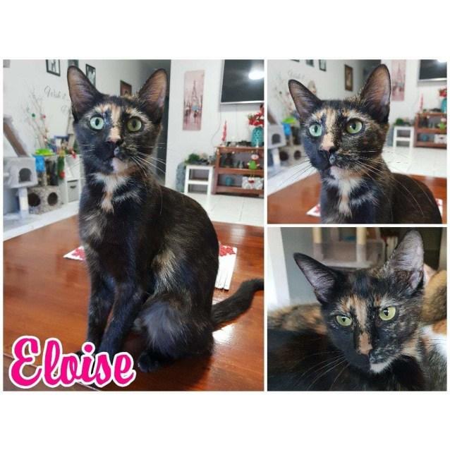 Photo of Eloise