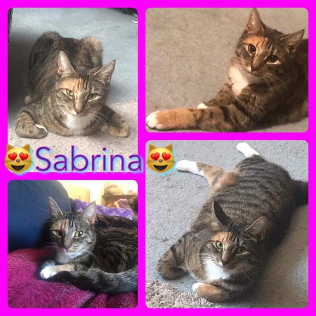 Photo of Sabrina   Located In Coburg