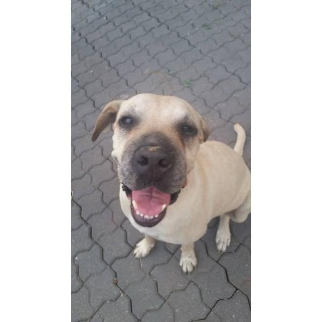 Photo of Cleo1