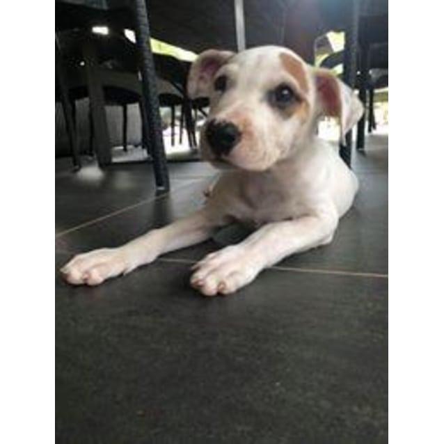 Photo of Kyla