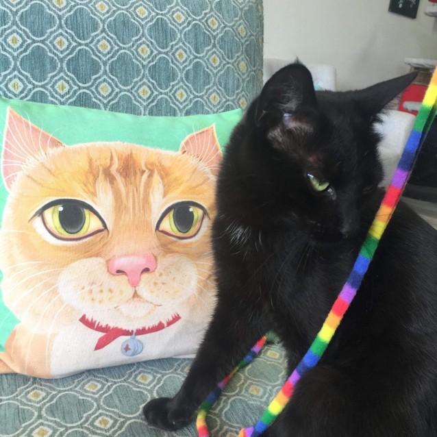 Photo of Astro   Meet Me In Cat Lounge/Neko Hq Preston
