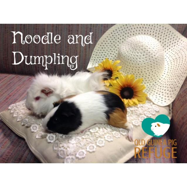 Photo of Noodle And Dumpling