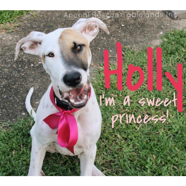 Photo of Holly