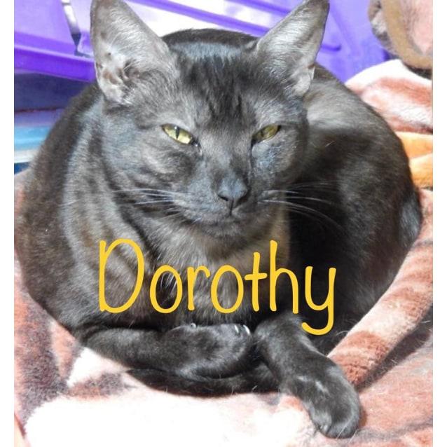 Photo of Dorothy