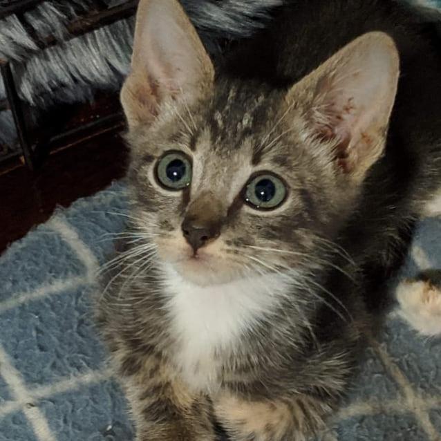 Photo of Arturo