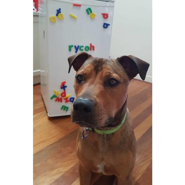 Photo of Rycoh