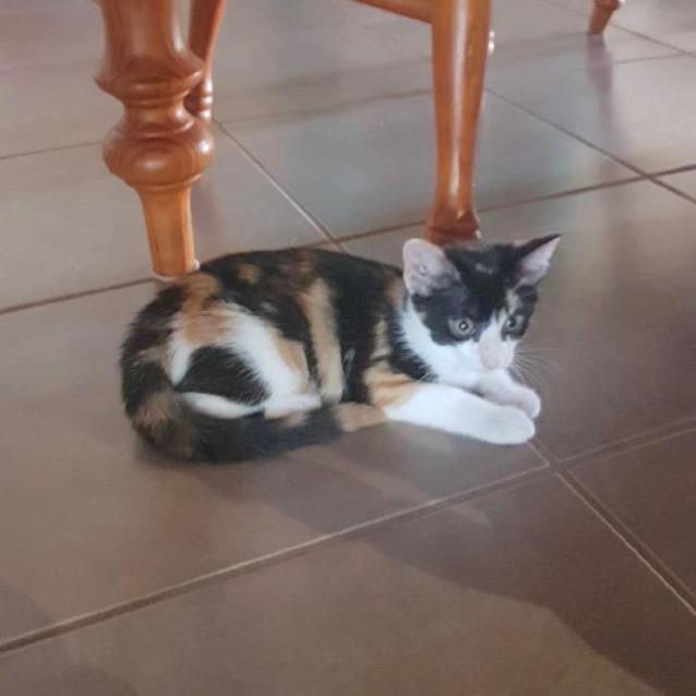 Photo of Freda