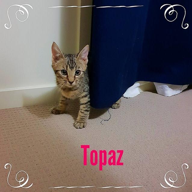 Photo of Topaz