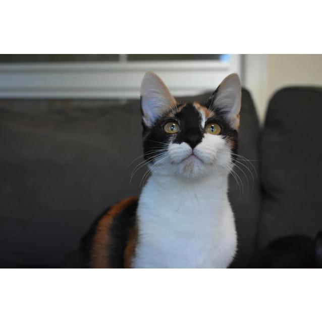Photo of Becca