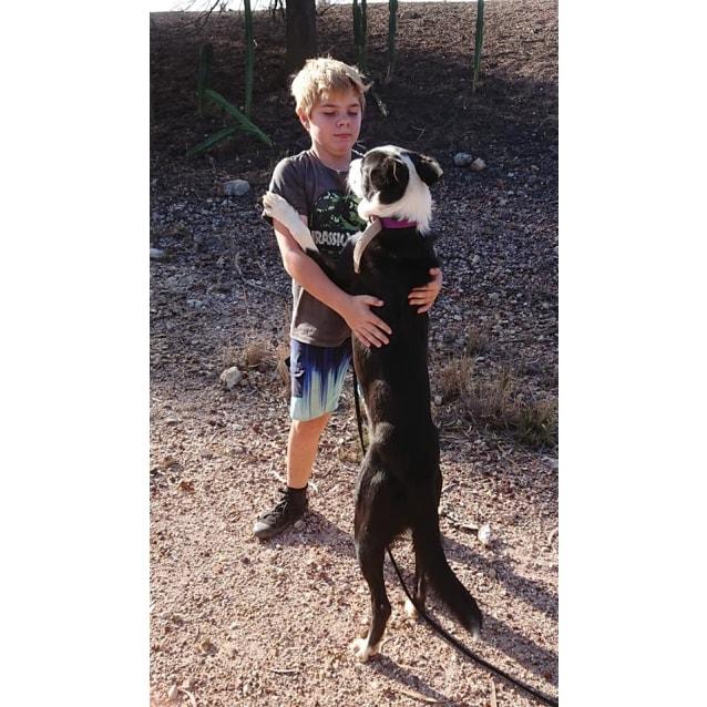 Photo of Dougie