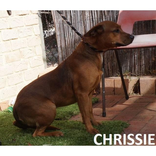 Photo of Chrissie