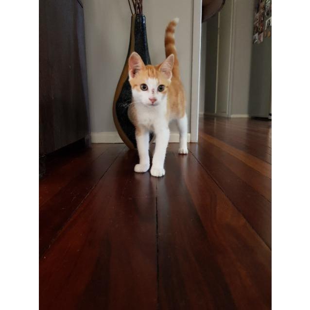 Photo of Calvin