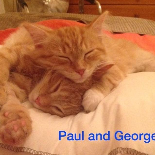 Photo of George