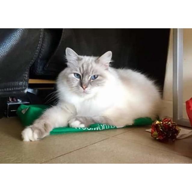 Photo of Lacie