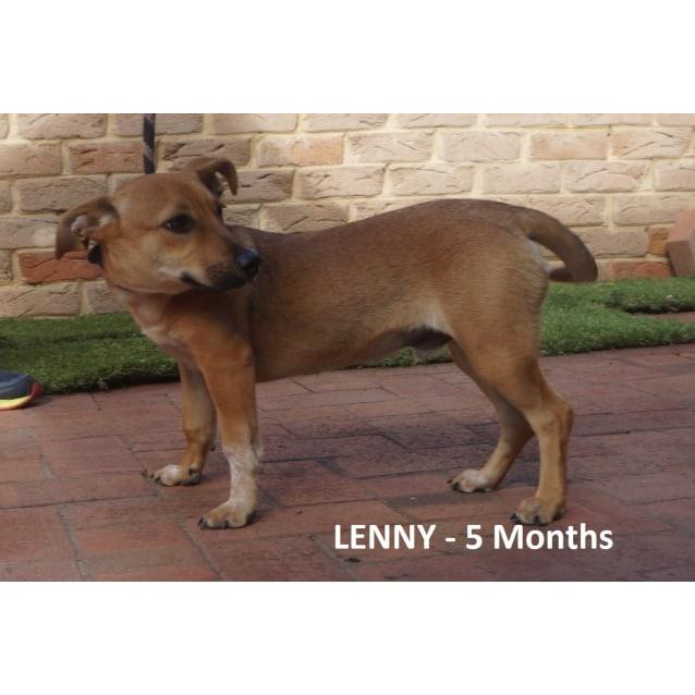 Photo of Lenny
