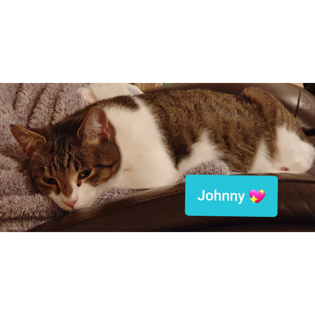 Photo of Johnny