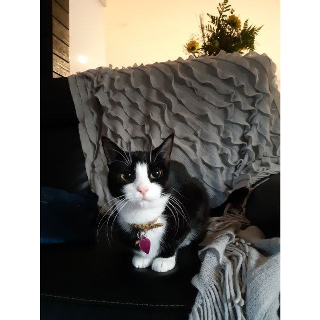 Photo of Madeline (Located In Narre Warren South)
