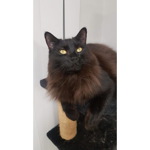 Photo of Peeta