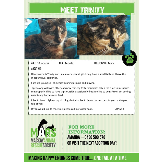 Photo of Trinity