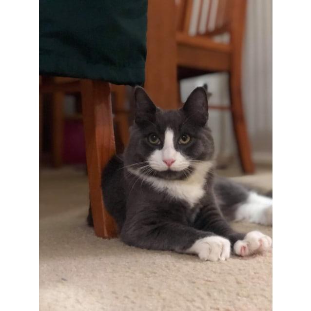 Photo of Patty 💚