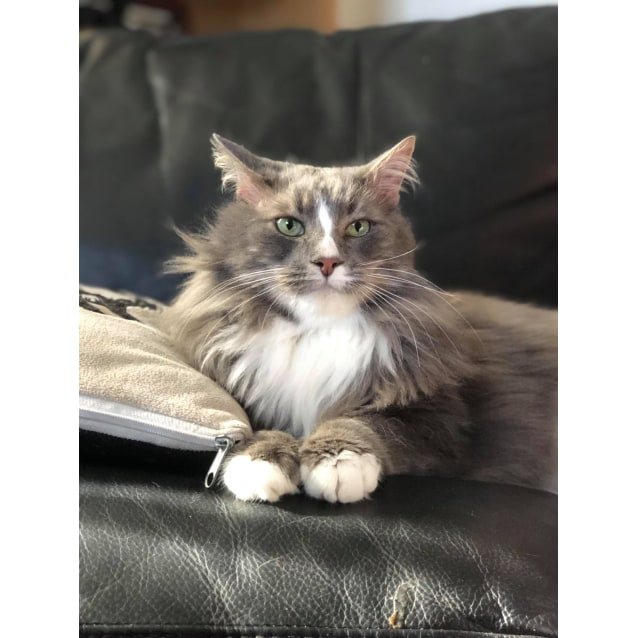 Photo of Florence (Located In Frankston North)