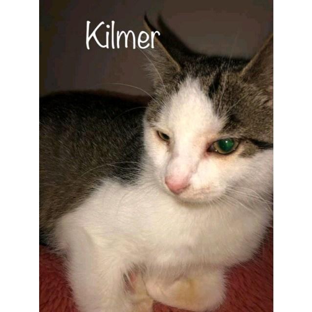 Photo of Kilmer