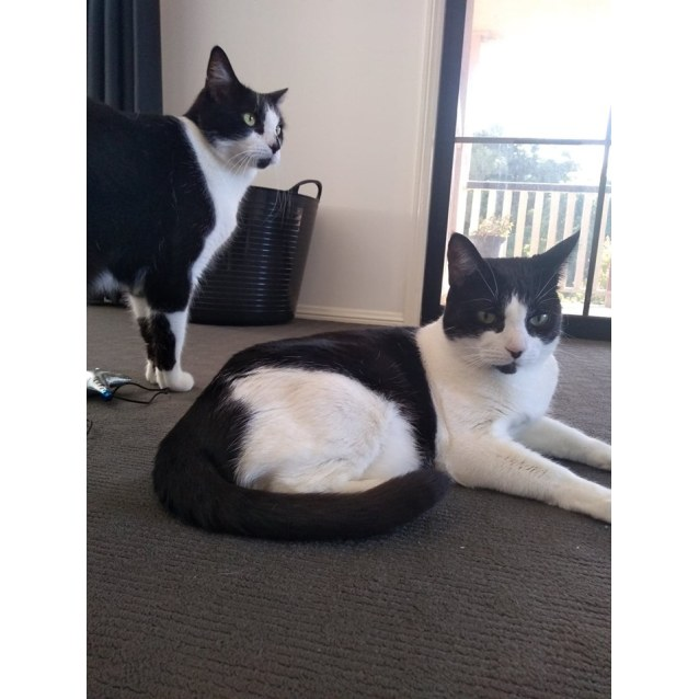 Photo of Steve & Tilly