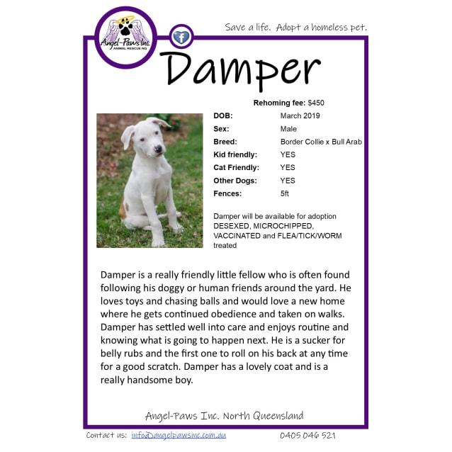 Photo of Damper