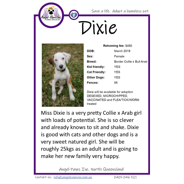 Photo of Dixie