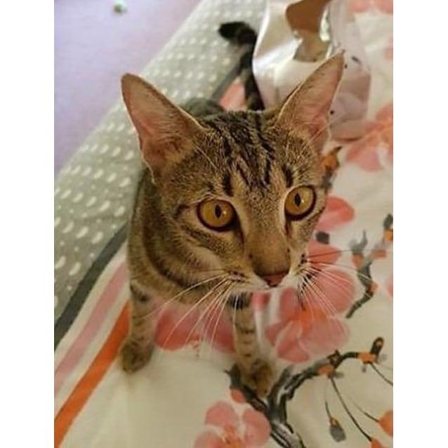 Photo of Amberly