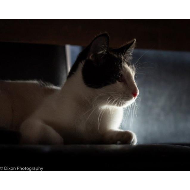 Photo of Briannah
