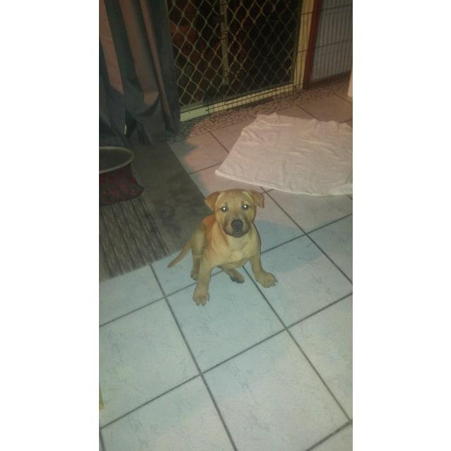 Photo of Drax