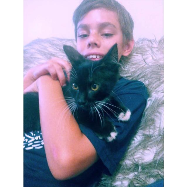 Photo of Jetta