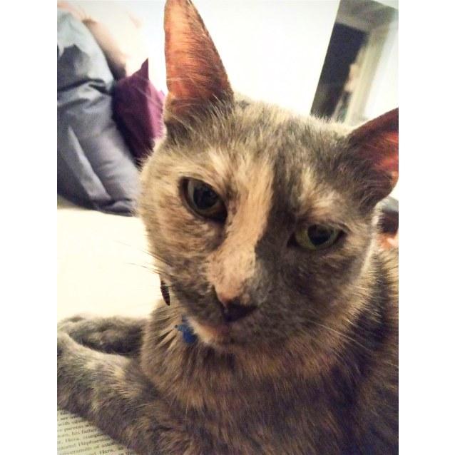 Photo of Jumby