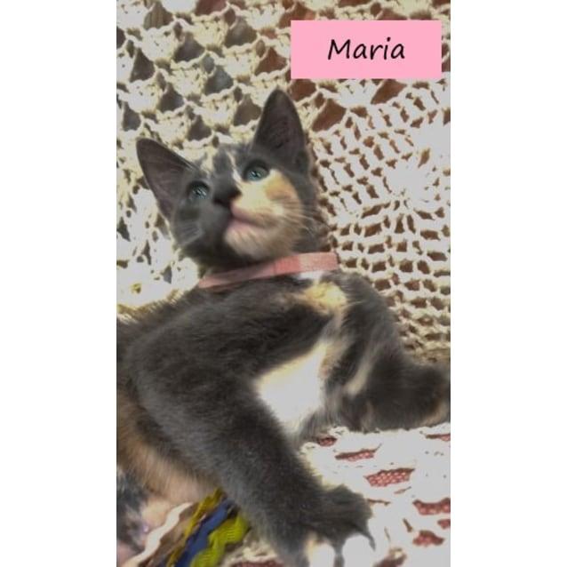 Photo of Maria