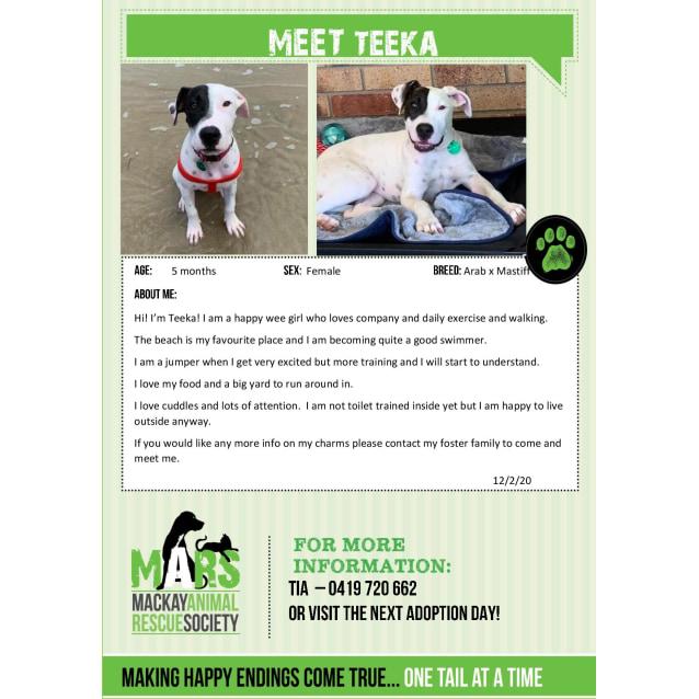 Photo of Teeka