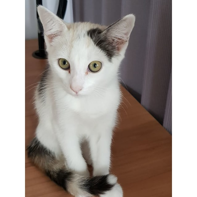 Photo of Juliana