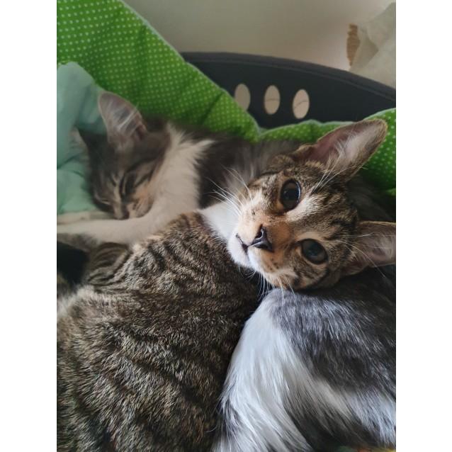 Photo of Eden & Toby