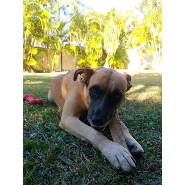 Photo of Athena