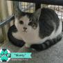 Photo of Monty