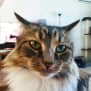 Photo of Ethel (Located In Westmeadows)
