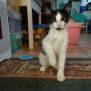 Photo of Luny