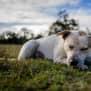 Photo of Blaire