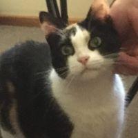 Photo of Squiggy