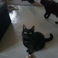 Photo of Estella