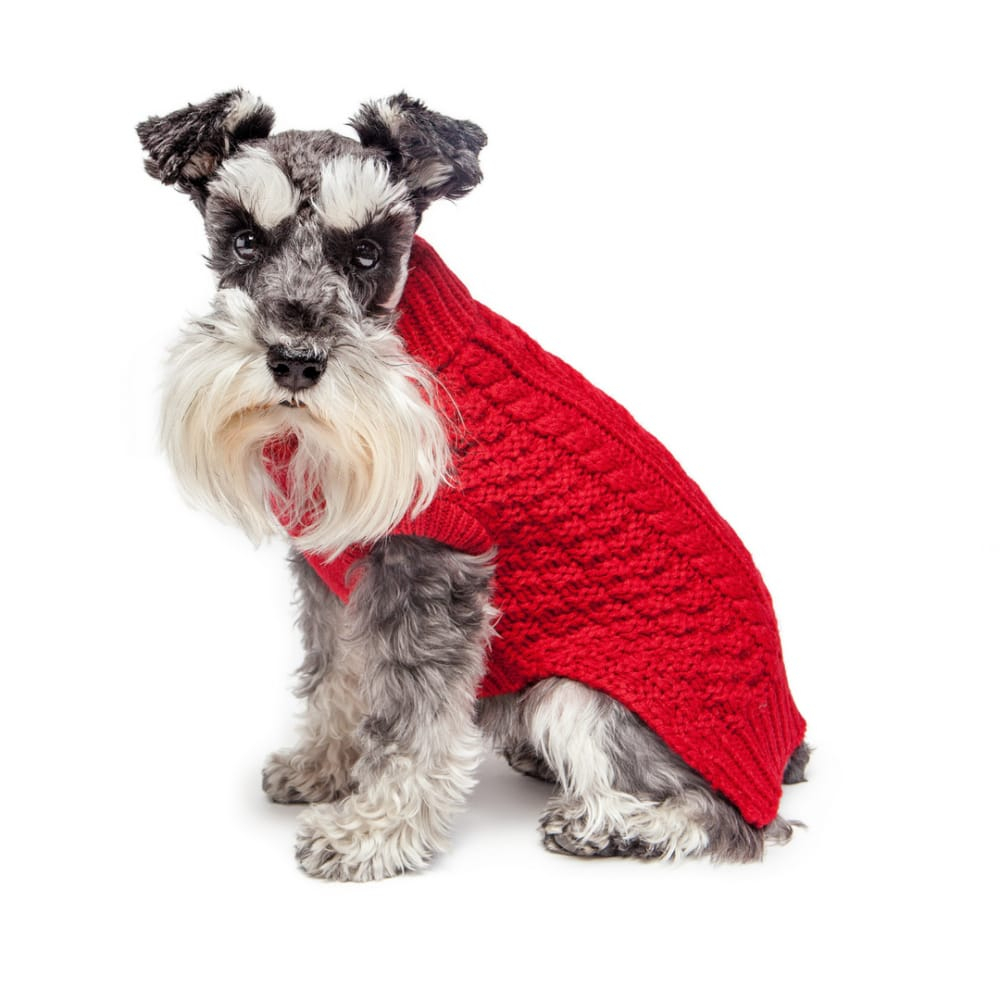Fab Dog - Super Chunky Knit Turtleneck Dog Sweater Red