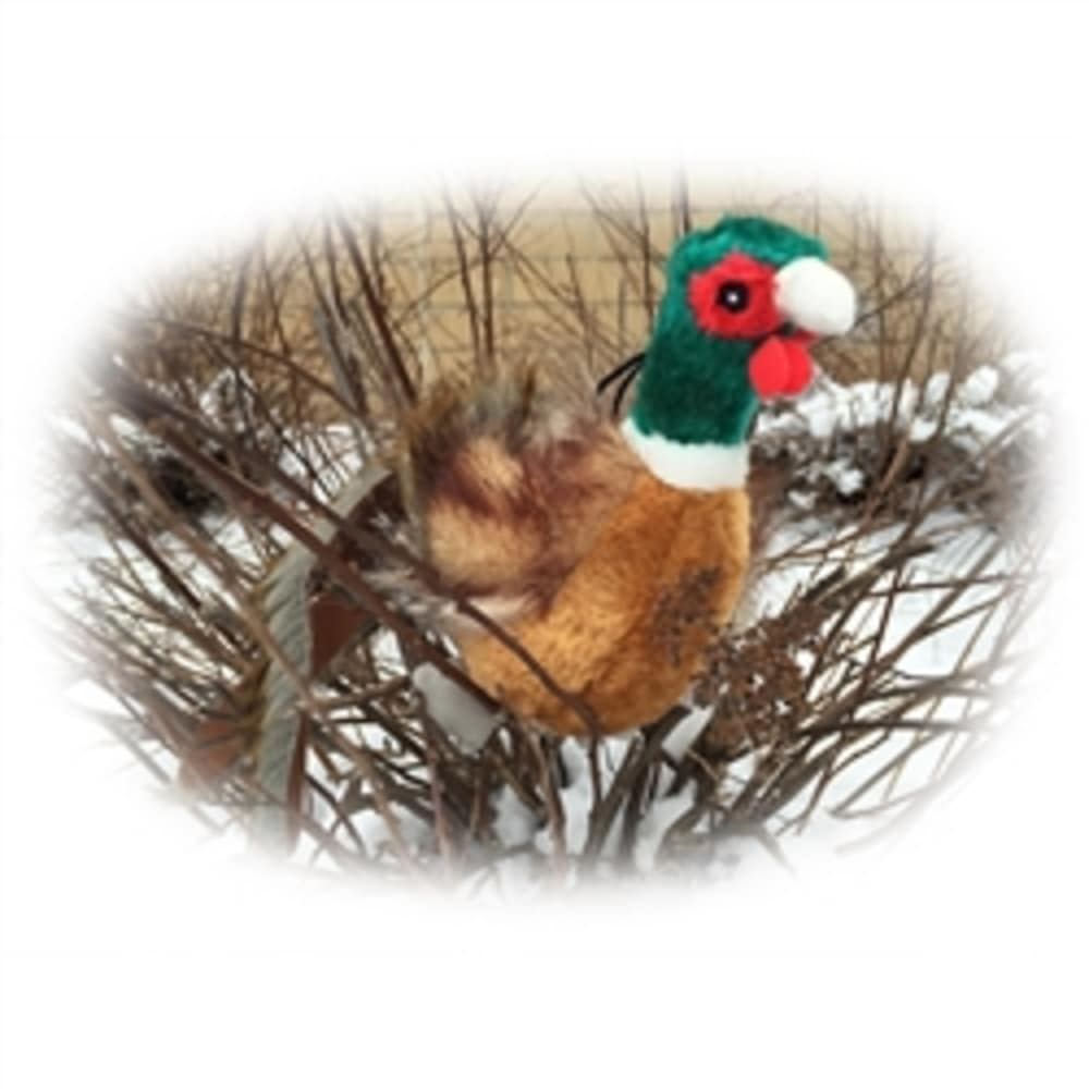 Steel Dog - Ball Bird Pheasant W/ Tennis Ball Dog Toy