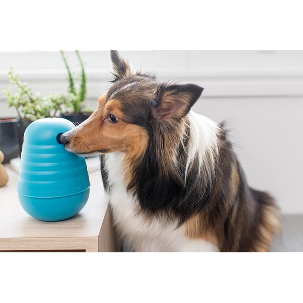 Outward Hound - Interactive Treat Dispensing Blue Pyramid Dog Toy, Large